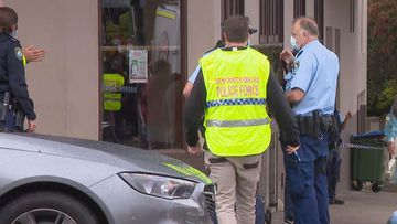 A woman died in Sydney this morning after being hit by a van.