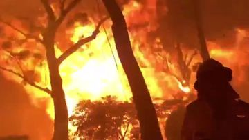 NSW RFS have been filmed battling flames as tall as gumtrees in Blackheath, in the Blue Mountains in a desperate attempt to save someone's home.