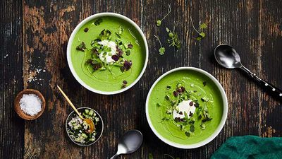 "Recipe: <a href=""https://kitchen.nine.com.au/2016/12/19/12/26/green-cucumber-kale-and-mint-gazpacho"" target=""_top"">Green cucumber, kale and mint gazpacho</a>"
