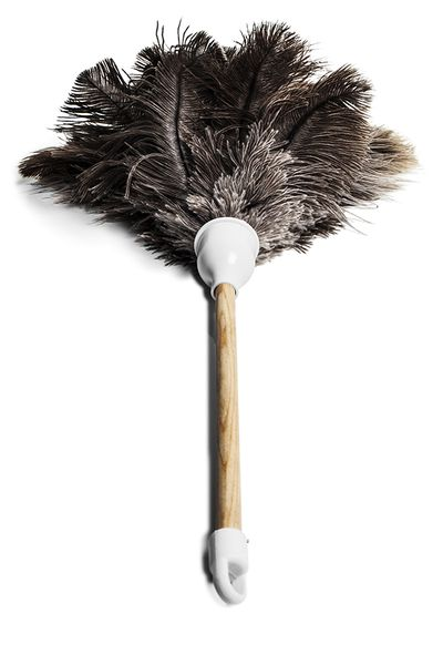 4. Using a feather duster