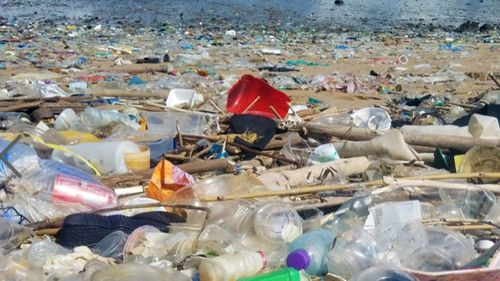 Beaches in Hong Kong have been swamped with rubbish. (Photo: Sea Shepherd)