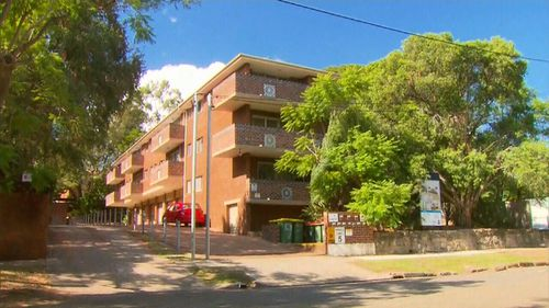 The child sustained head injuries and was taken to The Children's Hospital at Westmead. (9NEWS)