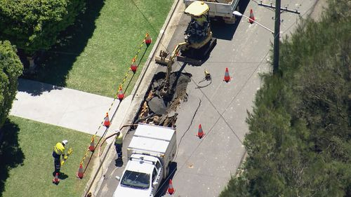 A sinkhole has opened up in Newport on Sydney's northern beaches.