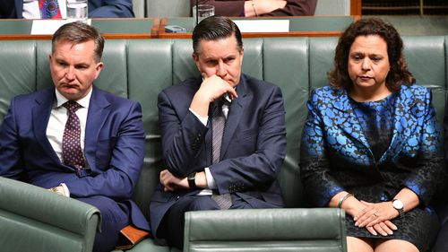 Shadow ministers Chris Bowen, Mark Butler and Michelle Rowland listen.