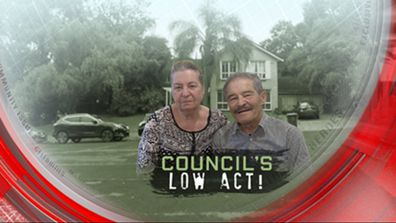 Council's low act