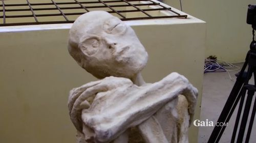 Russian scientists claim this mummy, found near Nazca in Peru last year, may not have been human (Gaia).