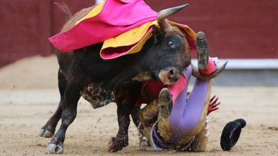 Second matador Antonio Nazare, who finished off Mora's beast, didn't fare so well on his official round.