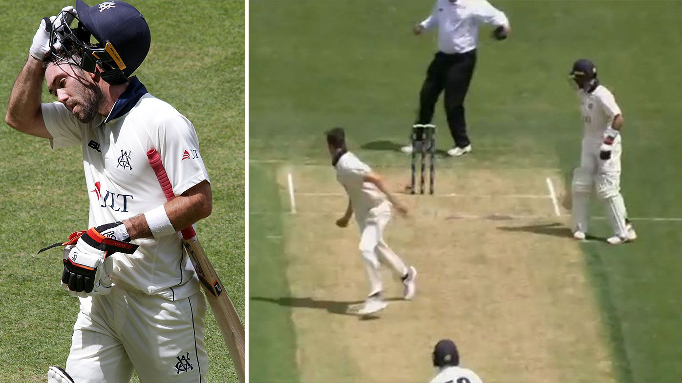 Glenn Maxwell involved in freakishly unlucky run out in Sheffield Shield clash against WA