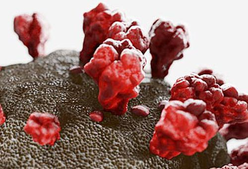 3D illustration of novel coronavirus (Getty)