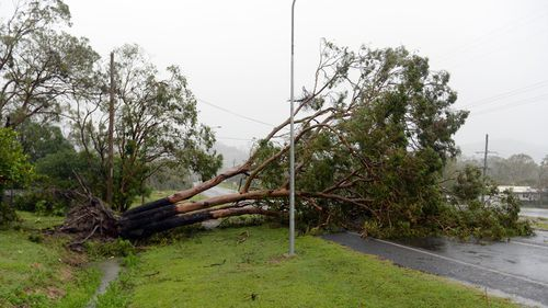 North Queensland could be hit by first cyclone of the season this weekend