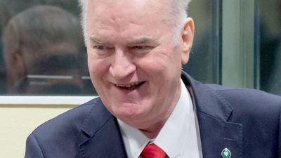 Hague war crimes tribunal halted after Mladic's angry outburst