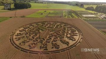Drones investigate mysterious crop circles