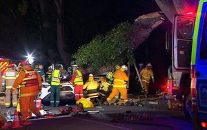 Woman killed as tree branch falls on her car following severe storms in Adelaide