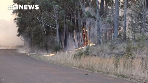 The blaze has sparked spot fires ahead of the main fire front at Mount Kingiman.