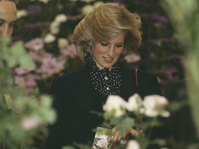 Princess Diana, 1984