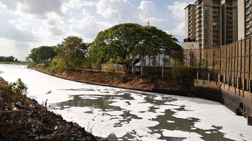 Toxic froth from industrial pollution floats on Bellundur Lake on World Environment Day, in Bangalore, India. (AP)