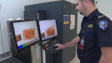 Border Force officers see all sorts of weird and bizarre things come through the x-ray machines. Picture: 9NEWS