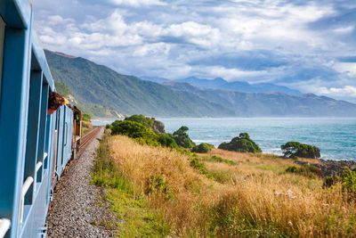 3. Most expensive: New Zealand - $100.07