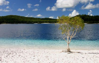 10. Lake McKenzie (Qld)