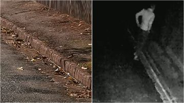 Residents in Adelaide's east are frustrated over a serial pest who keeps defecating on the footpath in Brunswick Lane.