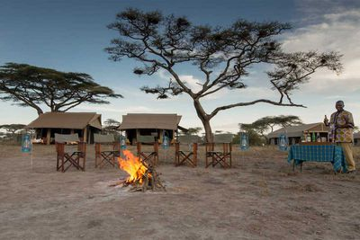 <strong>Custom 12-night luxury Tanzanian holiday</strong>