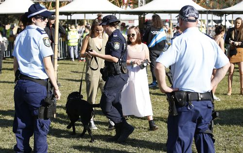 Arguments for and against pill-testing run hot as drug dogs and a heavy police presence continue at Australia music festivals after recent deaths of young people from suspected overdoses.