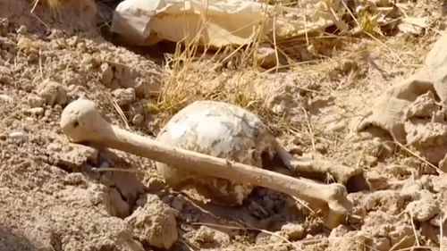 Up to 400 bodies are believed to be buried in the mass graves. (AAP)