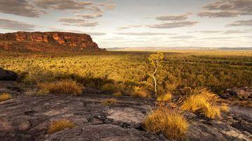 Kakadu and Litchfield National Park, Northern Territory