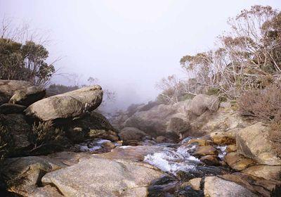<p>Victoria: Back Wall Walk, 12km, Mount Buffalo National Park</p>