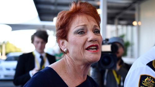 "One Nation leader Pauline Hanson says she's ""disgusted"" by the Al Jazeera report."