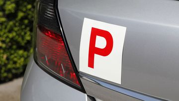 P plate driver P-Plater red P-plates stock file