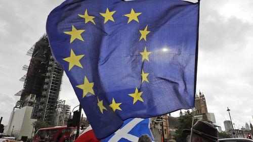 EU supporter, London