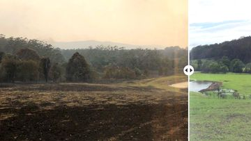 Hollywood actor Russell Crowe posted photos taken 10 weeks apart, to show how his NSW property has bounced back from bushfires.