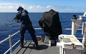 US Coast Guard open fire at huge shark metres away from swimmers