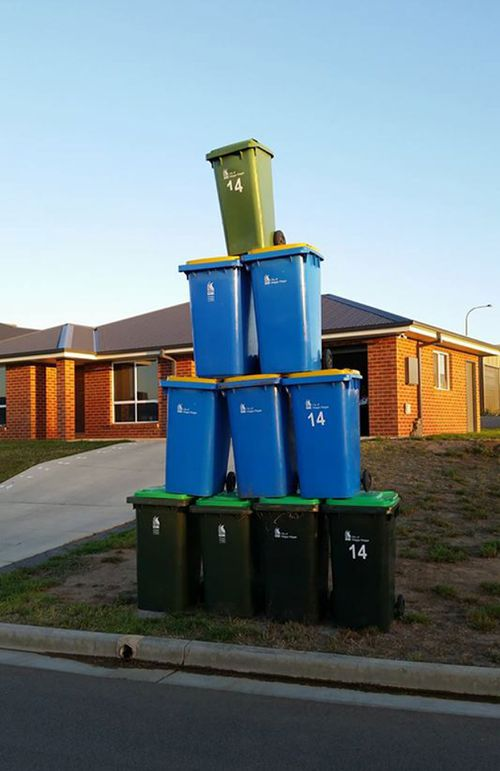 Wagga residents vent their frustration with 'Bin Sculptures' Facebook protest