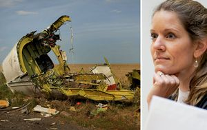 MH17 trial: Defence lawyers push for fresh investigation
