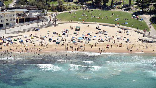 Man 'threatened lifeguard with a spear gun' on Sydney beach