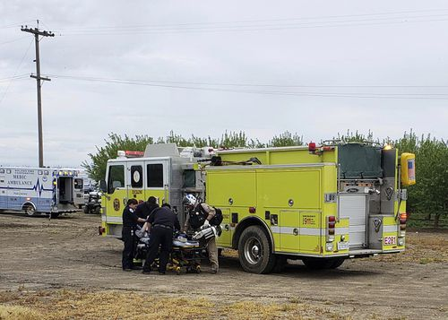 Two teenage boys were electrocuted while trying to rescue a dog from an irrigation canal at an orchard in Dixon, California.