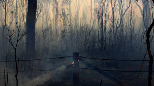 While the fire is still not fully  contained, firefighters managed to spare homes from destruction.