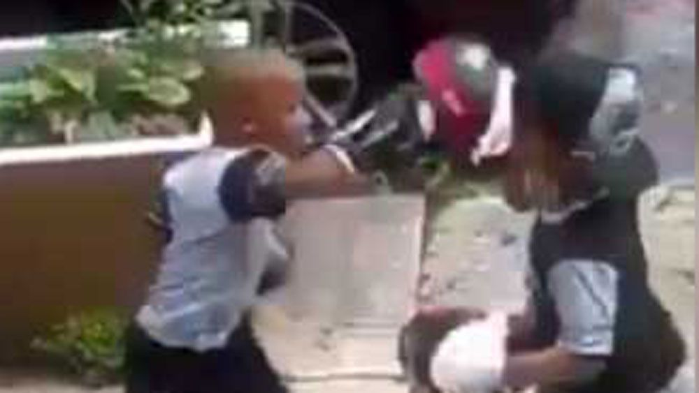 Pint-sized boxer lets loose