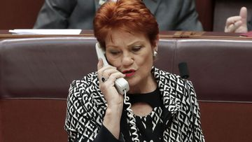 Pauline Hanson has been pushing for an inquiry into the dairy industry.