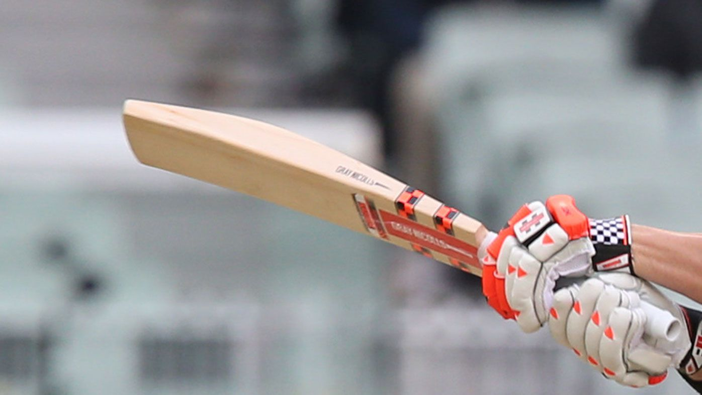 David Warner uses one of the thickest bats in international cricket. (AAP)