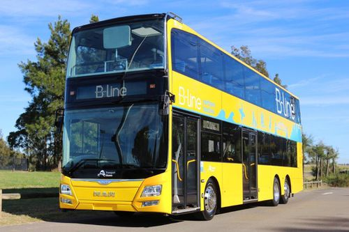 The new $500 million B-Line bus service also launches on Sunday. (Supplied)