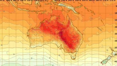 Total fire ban in NSW tomorrow as week-long heatwave sets in