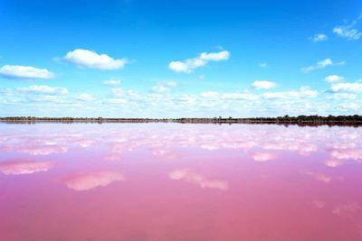 2. Pink Salt Lake, Esperance, Western Australia