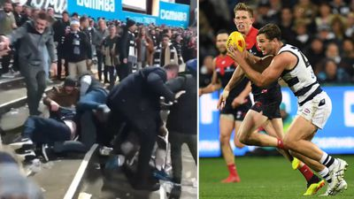 'They should be embarassed': Violent brawl erupts between AFL fans
