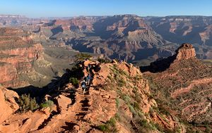Woman bitten by snake at Grand Canyon has allergic reaction to antivenom