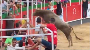 Spectators ran for their lives after a bull jumped into the stands at a Spanish festival and began charging at them.