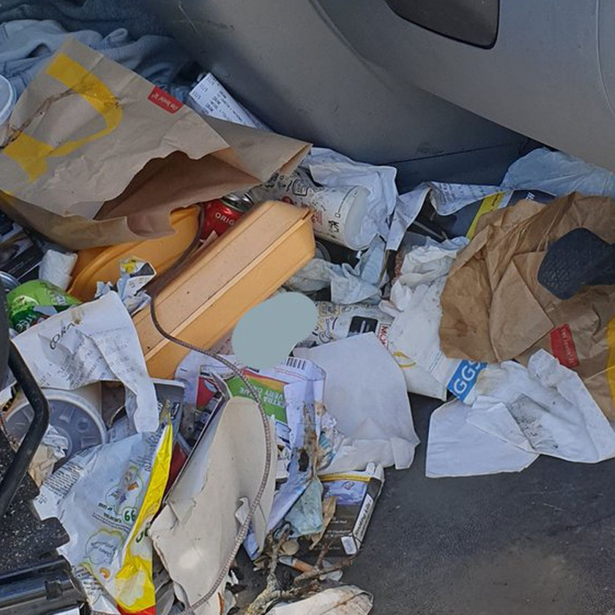 Police Fine Driver For Insanely Messy Car Interior 9honey
