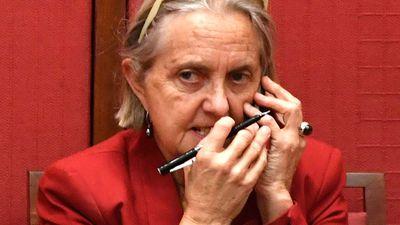 Rhiannon loses Greens top NSW Senate spot